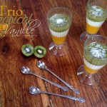 Trio tropical mangue vanille kiwi