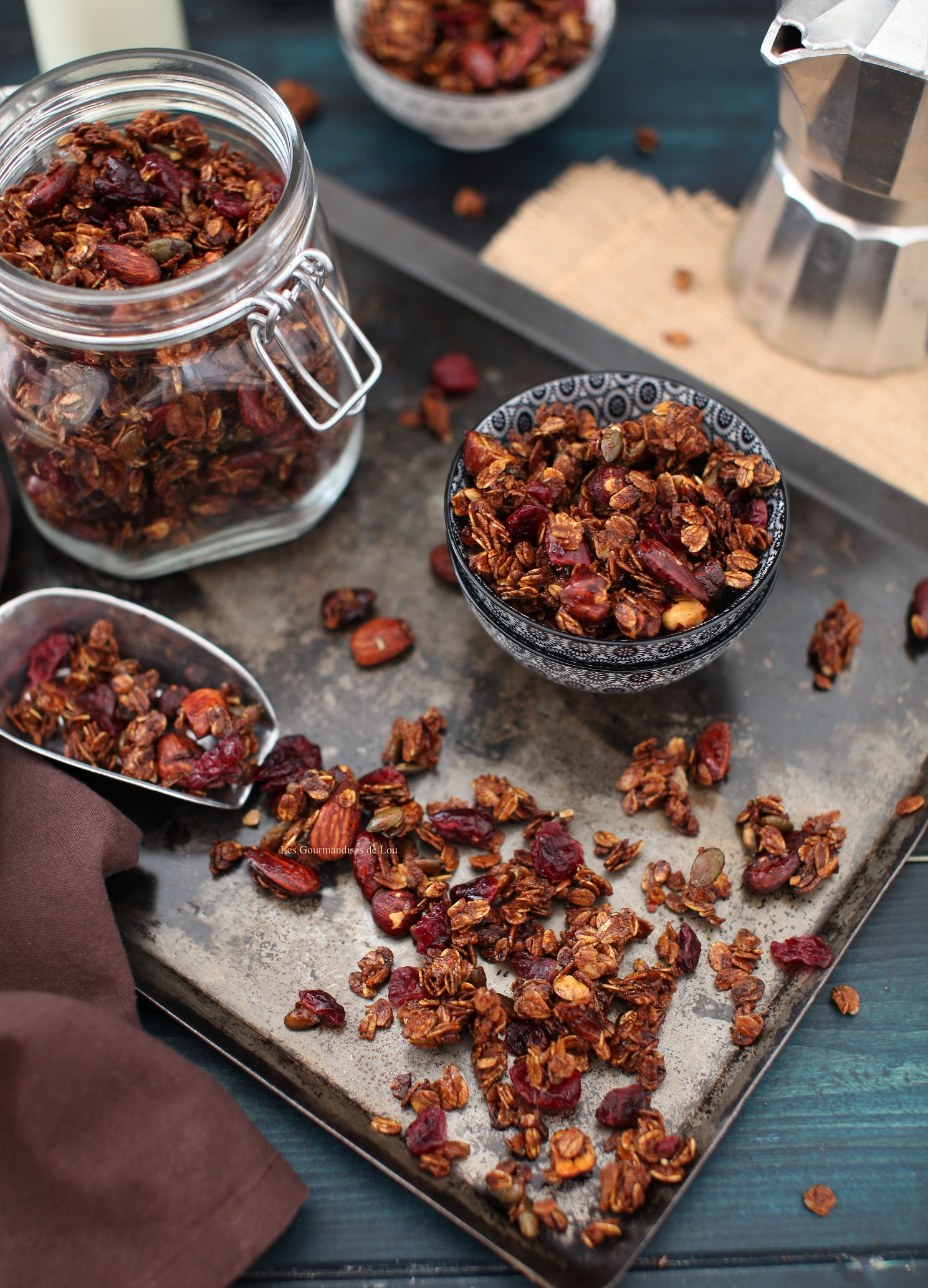 granola-cranberries-noisettes-amandes-graines-de-courge