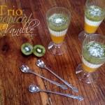 Trio tropical mangue vanille kiwi